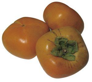 和歌山たねなし柿